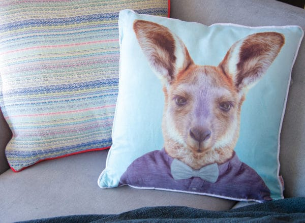 Zoo Portrait - Cushion - Kangaroo - Annabel Trends