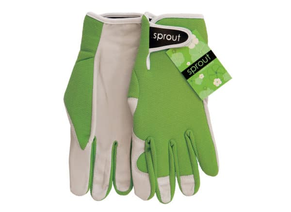 Sprout Goatskin Gloves - Annabel Trends